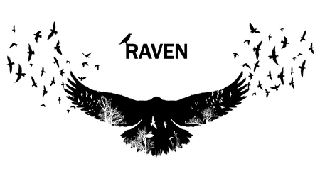 Flying raven double exposure. Иллюстрация