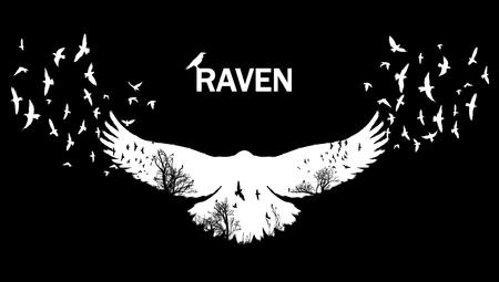 Illustration vectorielle de la silhouette du corbeau blanc avec les ailes qui flottent sur un fond noir Effet de la double exposition.