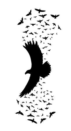 silhouette of a flying raven. vector illustration. vector outline of raven.sticker template