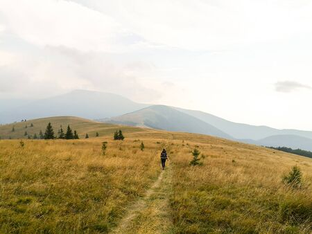 Man walking into distance hiking on a fields with wheat towards very high mountains. Backpacking and camping adventure.