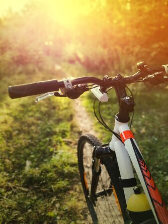 Close up of white bicycle exploring forest roads during sunset. Sun rays going through woods on lonely bike