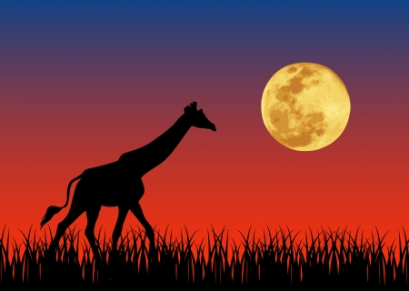 Vector illustration of giraffe and moon