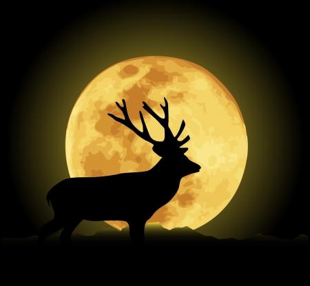 Vector illustration de cerf et de la lune