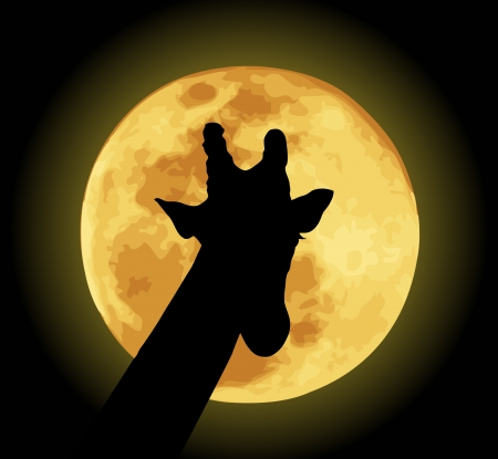 dobbin: Vector illustration of giraffe and moon.  Illustration