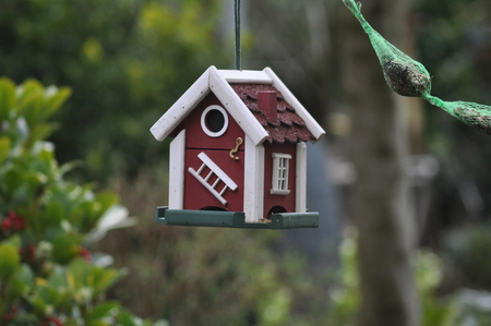Swedish birdhouse garden fat bulbs bird feed background red Stock Photo