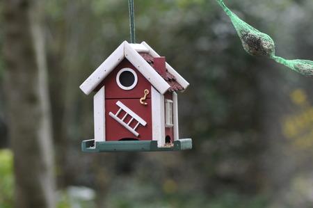 Swedish birdhouse garden fat bulbs bird feed background bokeh Stock Photo