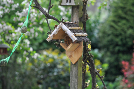 Birdhouse fat bulbs bird feed feed bird birds cottage mortgage