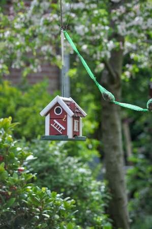 Birdhouse in the backyard fat bulbs bird feed birds mobile portrait Stock Photo - 118703996