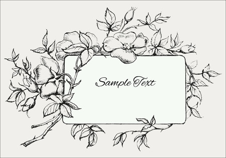 hand drawn flower: Hand Drawn Flower Frame with Dog-Rose Illustration