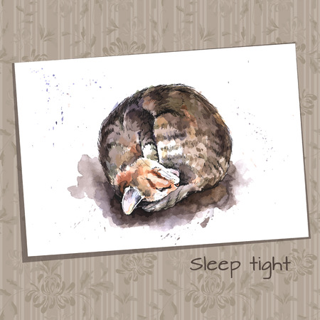 grappling: Sketch of a Sleeping Home Cat Illustration