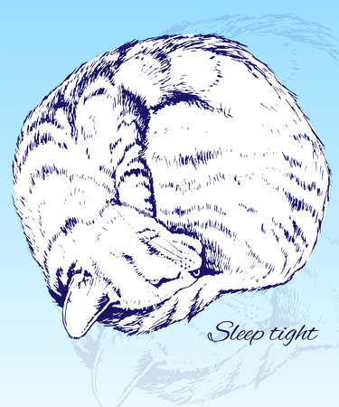 dinner date: Sketch of a Sleeping Home Cat Illustration