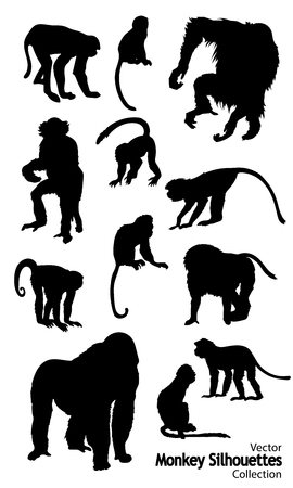 Twelve Vector Monkey silhouettes collection