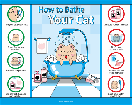 concerns: How  to Bathe Your Cat vector graphic guide