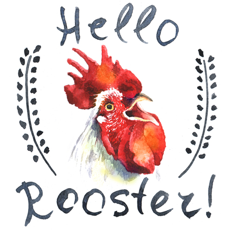 hand-drawn vintage style rooster card Stock Photo