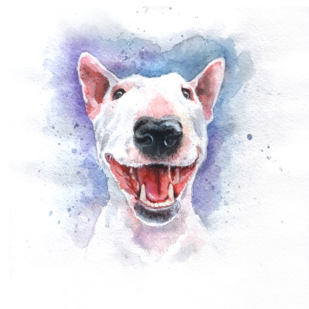 Watercolor hand-drawn bright-colored bullterrier Stock Photo