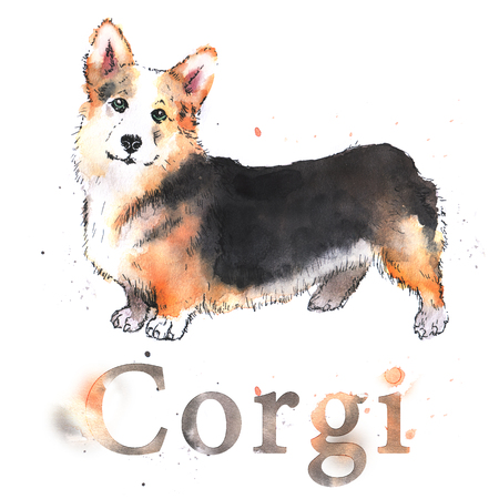 Watercolor hand-drawn bright-colored welsh corgi card