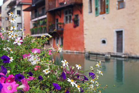 lac: Colourful flowers in Annecy town centre, France.