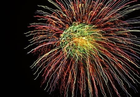The perfect firework burst. Banco de Imagens - 10216571