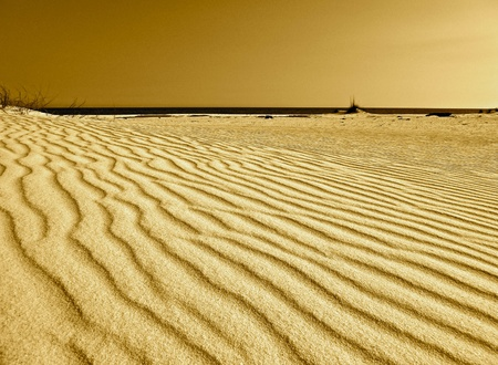 A dune of rippled sand.