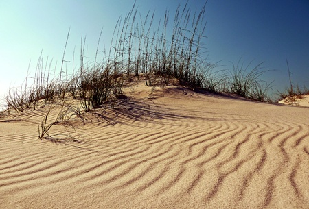 Looking up at the sand dune. Stock Photo