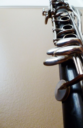 grenadilla: Looking up at the bottom clarinet joint.