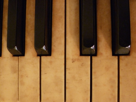 A select view of the piano keys.