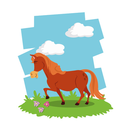 horse care: Animal concept with cartoon icons design, vector illustration 10 eps graphic.