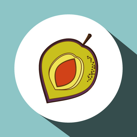 market gardening: Fruits  concept with icon design, vector illustration 10 eps graphic