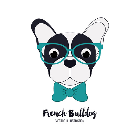 Dog concept with french bulldog icon design, vector illustration 10 eps graphic. 矢量图像