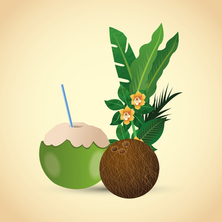 exotic fruit: Tropical concept with icon design, vector illustration 10 eps graphic.