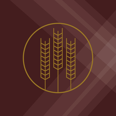 crop circles: Wheat  concept with icon design, vector illustration 10 eps graphic.