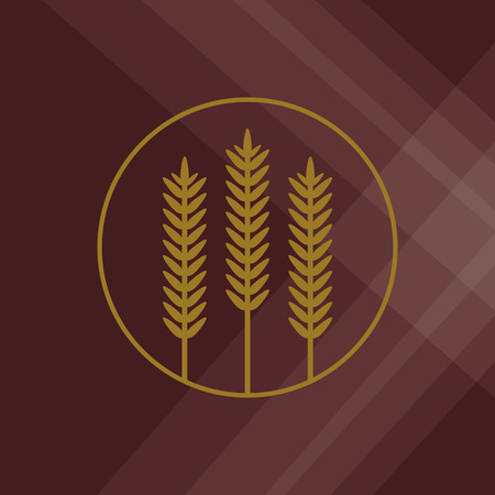 crop circle: Wheat  concept with icon design, vector illustration 10 eps graphic.