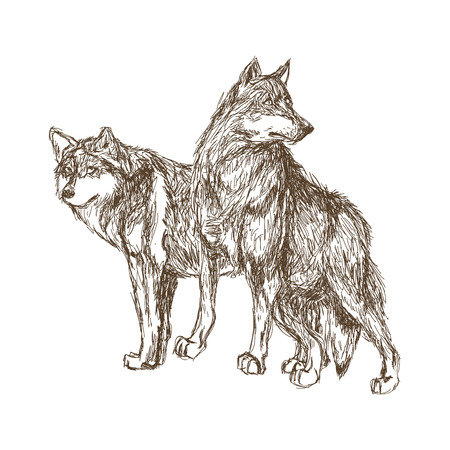 Wolf concept with icon design, vector illustration 10 eps graphic. Ilustração