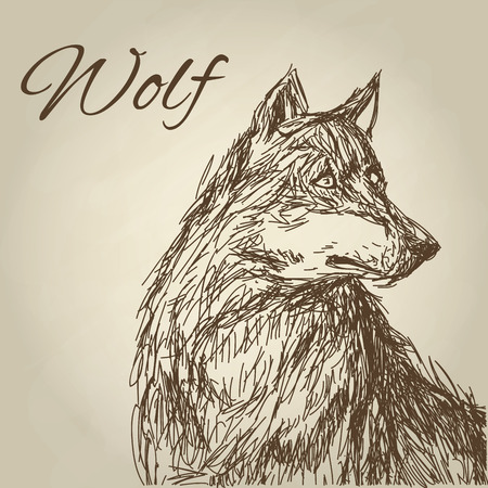 canis: Wolf concept with icon design, vector illustration 10 eps graphic. Illustration
