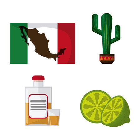 mexico culture: Mexico culture icons in flat design style, map, flag, cactus, lemmon and tequila. vector illustration