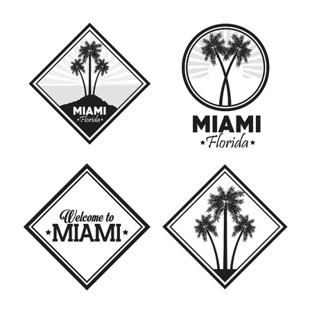 miami florida: Miami Florida concept represented by Palm tree plant over label design. isolated and flat background