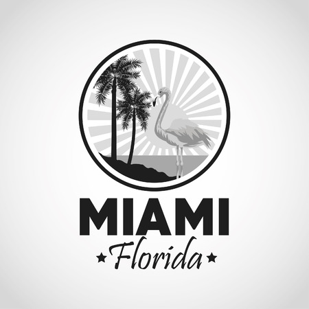 miami florida: Miami Florida concept represented by Palm tree plant and flamingo design. isolated and flat background