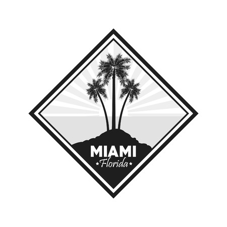 miami florida: Miami Florida concept represented by Palm tree plant design. isolated and flat background Illustration