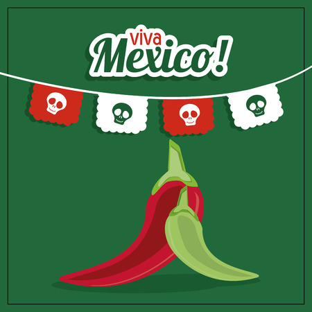 mexico culture: Mexico culture represented by pepper icon. Colorfull and flat background