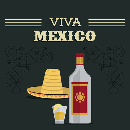 mexico culture: Mexico culture represented by tequila bottle shot and hat icon. Colorfull and flat background