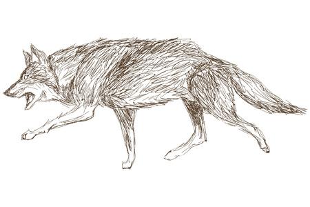 eenvoudige platte ontwerp wolf schets pictogram vector illustratie dierlijke