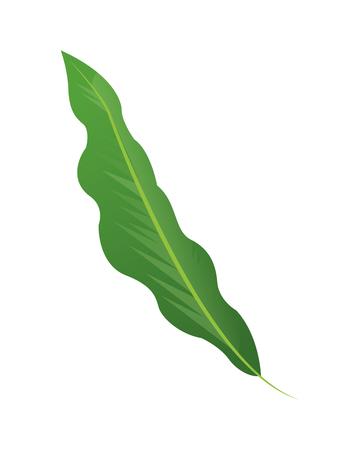single leaf: simple flat design single leaf icon vector illustration