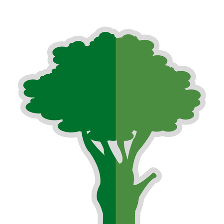 genealogical: simple flat design single tree icon vector illustration Illustration