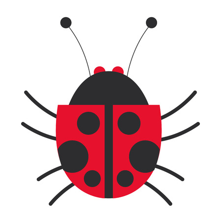 lady bug: flat design lady bug icon vector illustration
