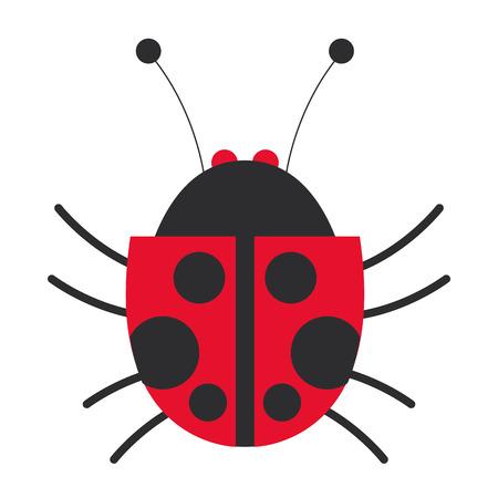 flat design lady bug icon vector illustration
