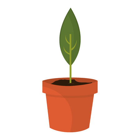 flat design sprout in pot icon vector illustration