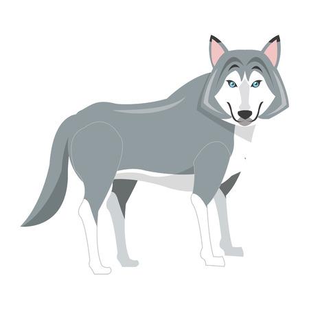 armory: flat design big wolf icon illustration Illustration