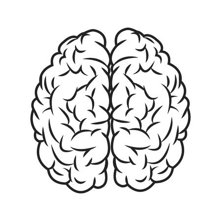 sensory: flat design human brain icon vector illustration