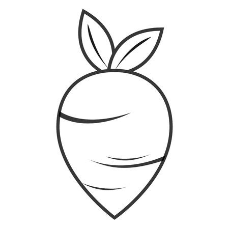 flat design whole beet icon vector illustration