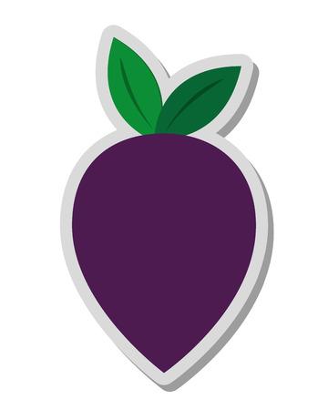 beet: flat design whole beet icon vector illustration